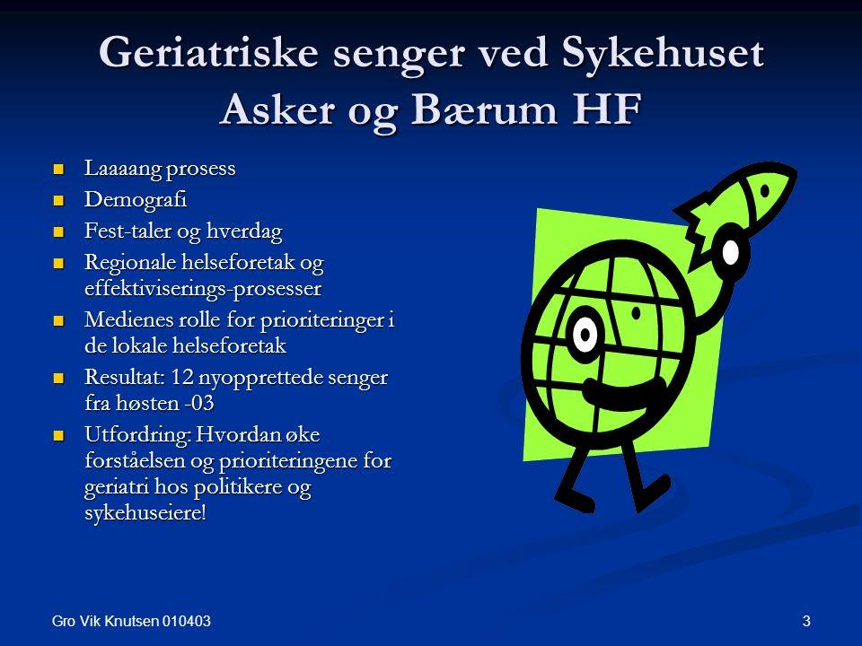 Gro Vik Knutsen 010403 3 Geriatriske senger ved Sykehuset Asker og Bærum HF Laaaang prosess Laaaang prosess Demografi Demografi Fest-taler og hverdag