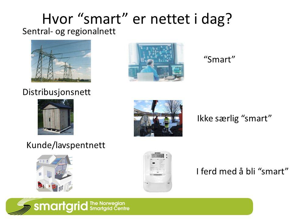 """Hvor """"smart"""" er nettet i dag? Sentral- og regionalnett Distribusjonsnett Kunde/lavspentnett """"Smart"""" Ikke særlig """"smart"""" I ferd med å bli """"smart"""""""