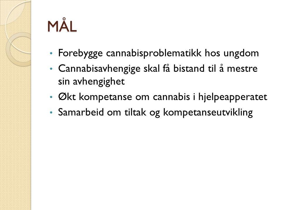 Hva er gjort så langt ? Kristiansand Kick-off 19.mars Opplæring 12.13.mai Kommunene er i gang