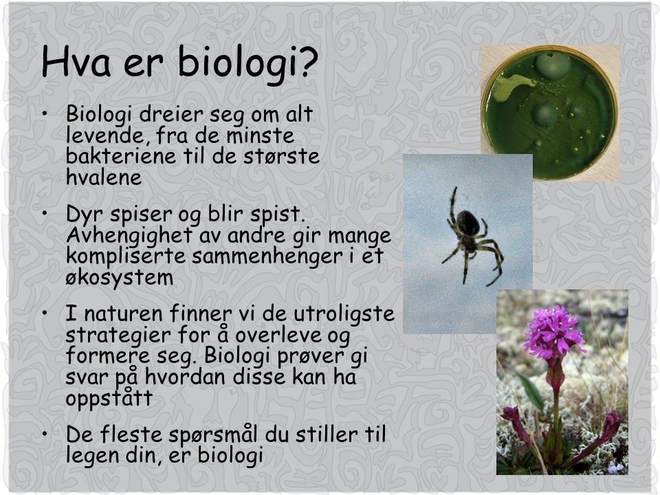 Hva er biologi.