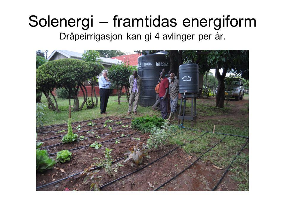 Solenergi – framtidas energiform Dråpeirrigasjon kan gi 4 avlinger per år.