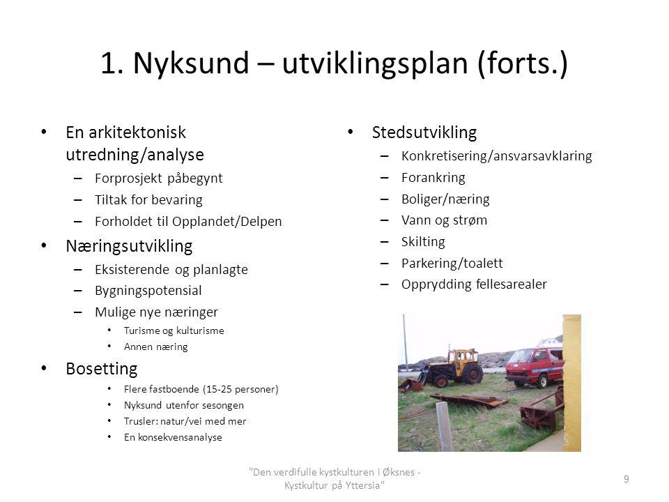 1. Nyksund – utviklingsplan (forts.) En arkitektonisk utredning/analyse – Forprosjekt påbegynt – Tiltak for bevaring – Forholdet til Opplandet/Delpen