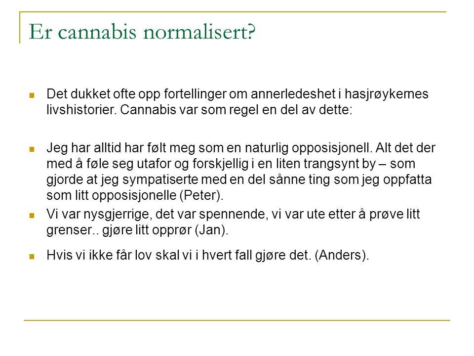 Er cannabis normalisert? Det dukket ofte opp fortellinger om annerledeshet i hasjrøykernes livshistorier. Cannabis var som regel en del av dette: Jeg