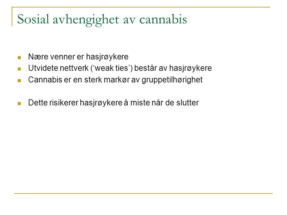 Sosial avhengighet av cannabis Nære venner er hasjrøykere Utvidete nettverk ('weak ties') består av hasjrøykere Cannabis er en sterk markør av gruppetilhørighet Dette risikerer hasjrøykere å miste når de slutter