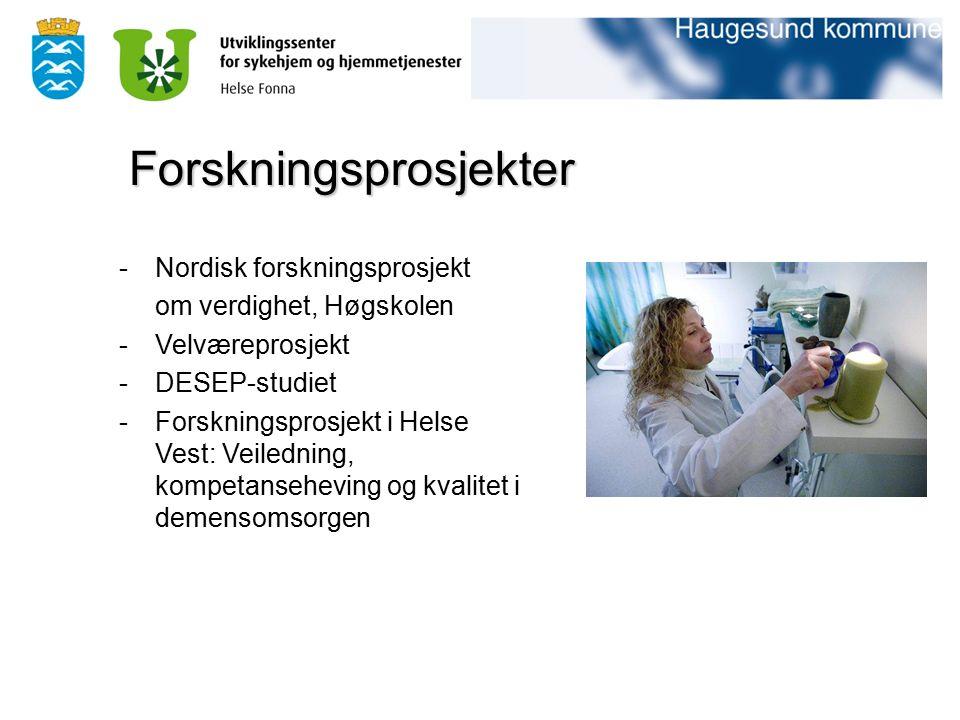 -Nordisk forskningsprosjekt om verdighet, Høgskolen -Velværeprosjekt -DESEP-studiet -Forskningsprosjekt i Helse Vest: Veiledning, kompetanseheving og