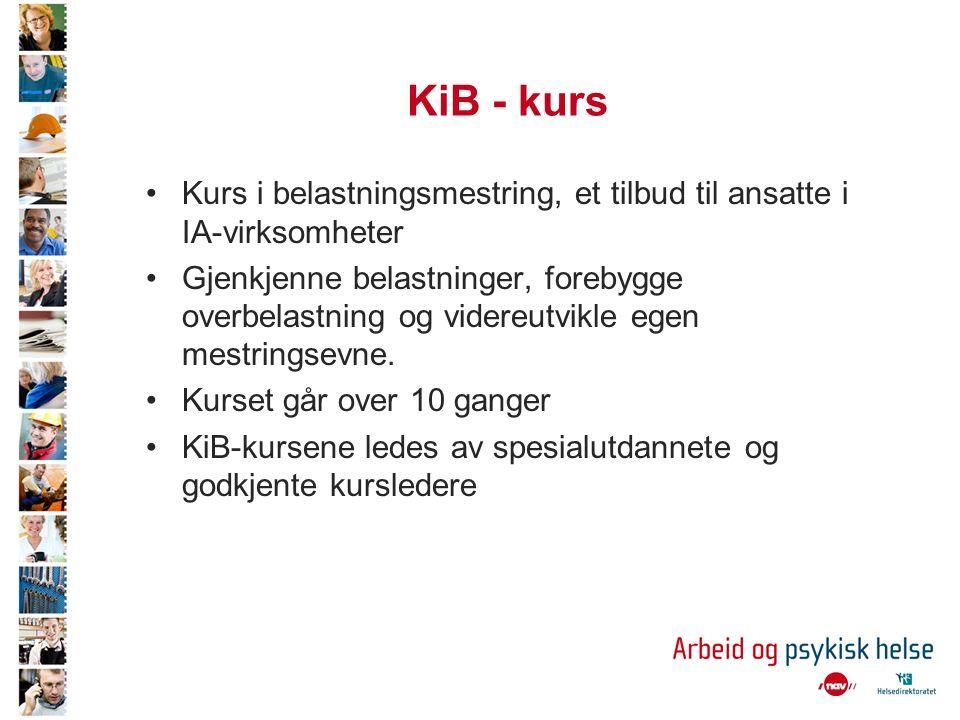 KiB - kurs Kurs i belastningsmestring, et tilbud til ansatte i IA-virksomheter Gjenkjenne belastninger, forebygge overbelastning og videreutvikle egen mestringsevne.