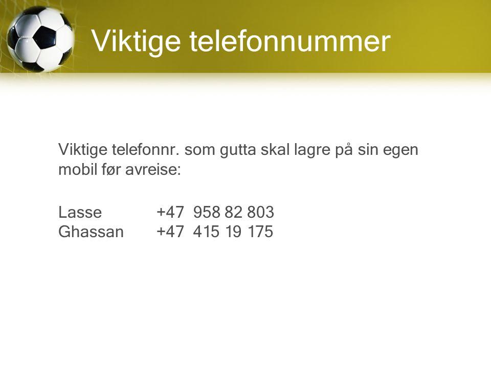 Viktige telefonnummer Viktige telefonnr.