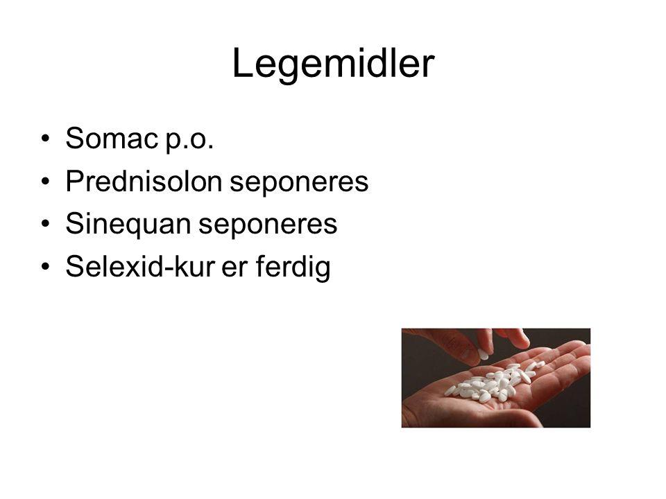 Legemidler Somac p.o. Prednisolon seponeres Sinequan seponeres Selexid-kur er ferdig
