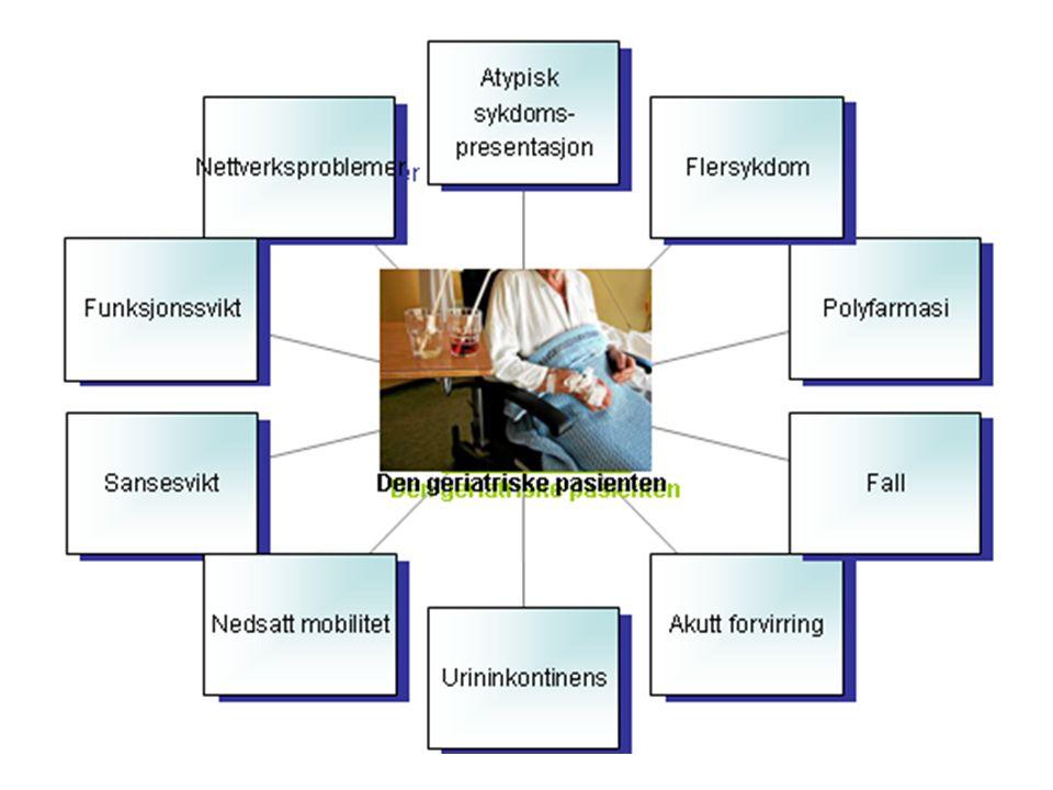 Geriatrisk arbeidsmetode Systematisk utredning Tverrfaglig vurdering og behandling Helhetlig tilnærming Funksjon og livskvalitet vektlegges
