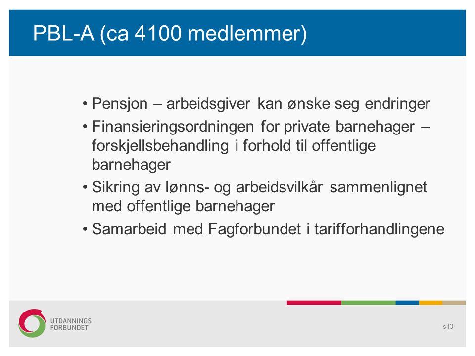 PBL-A (ca 4100 medlemmer) Pensjon – arbeidsgiver kan ønske seg endringer Finansieringsordningen for private barnehager – forskjellsbehandling i forhold til offentlige barnehager Sikring av lønns- og arbeidsvilkår sammenlignet med offentlige barnehager Samarbeid med Fagforbundet i tarifforhandlingene s13