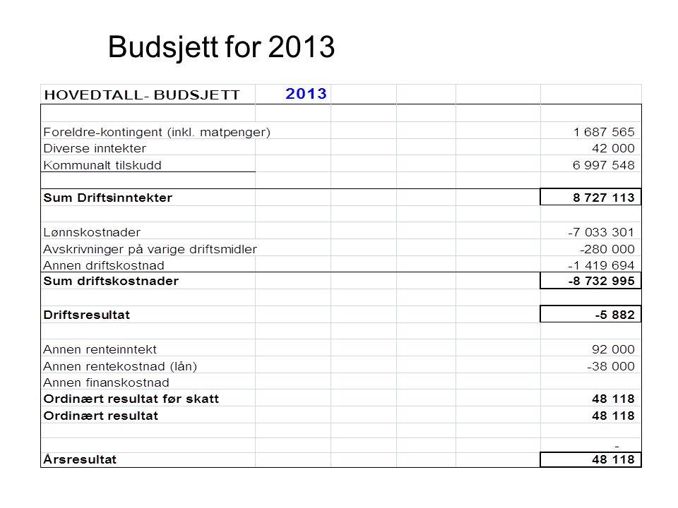 Budsjett for 2013