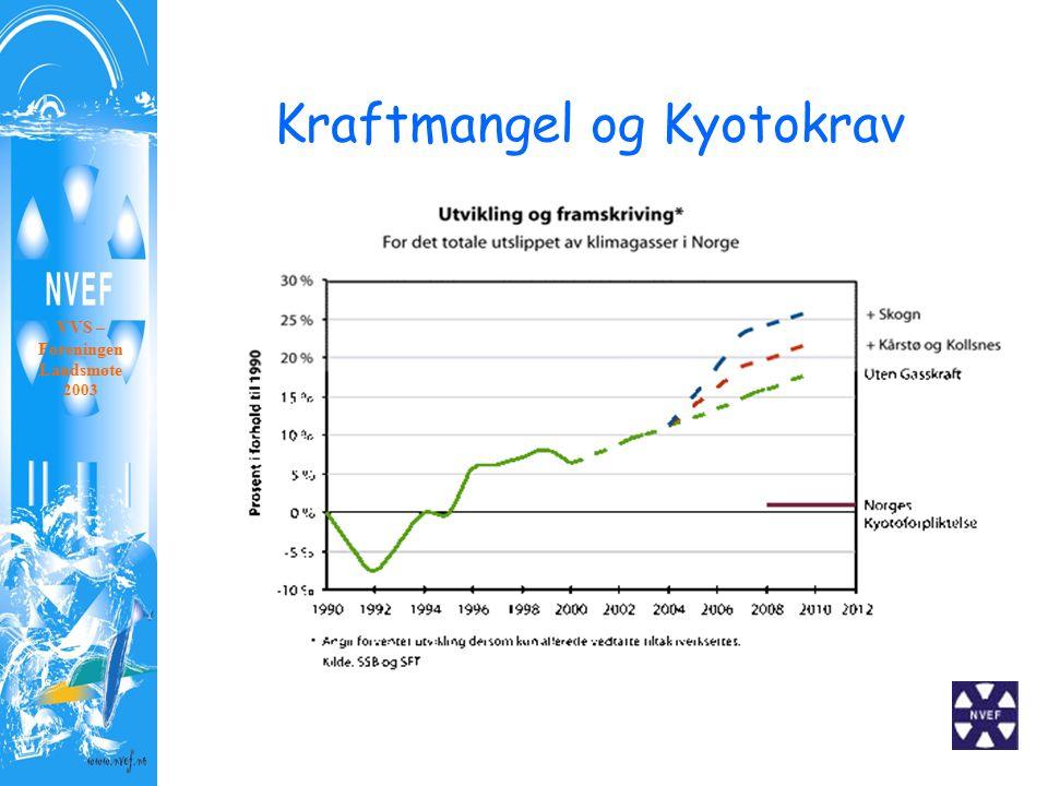 Kraftmangel og Kyotokrav VVS – Foreningen Landsmøte 2003