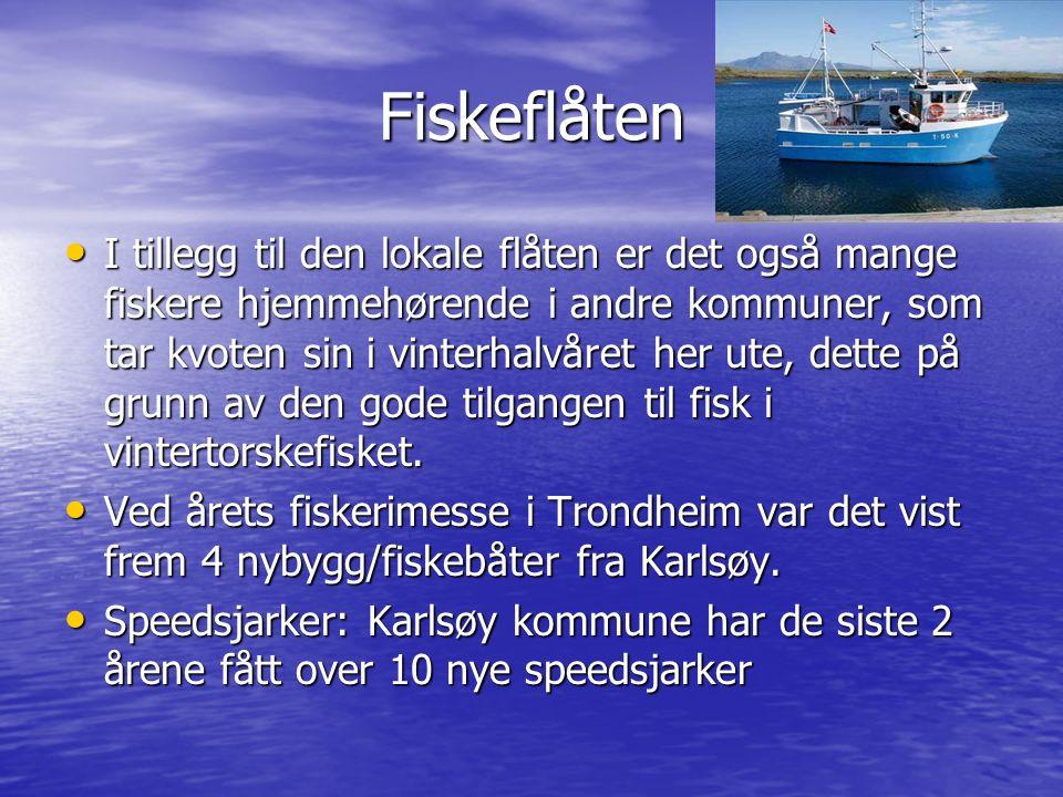 Fiskeflåten I tillegg til den lokale flåten er det også mange fiskere hjemmehørende i andre kommuner, som tar kvoten sin i vinterhalvåret her ute, dette på grunn av den gode tilgangen til fisk i vintertorskefisket.