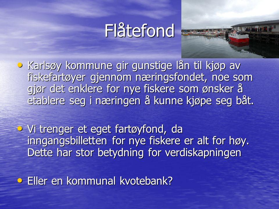 Flåtefond Karlsøy kommune gir gunstige lån til kjøp av fiskefartøyer gjennom næringsfondet, noe som gjør det enklere for nye fiskere som ønsker å etablere seg i næringen å kunne kjøpe seg båt.