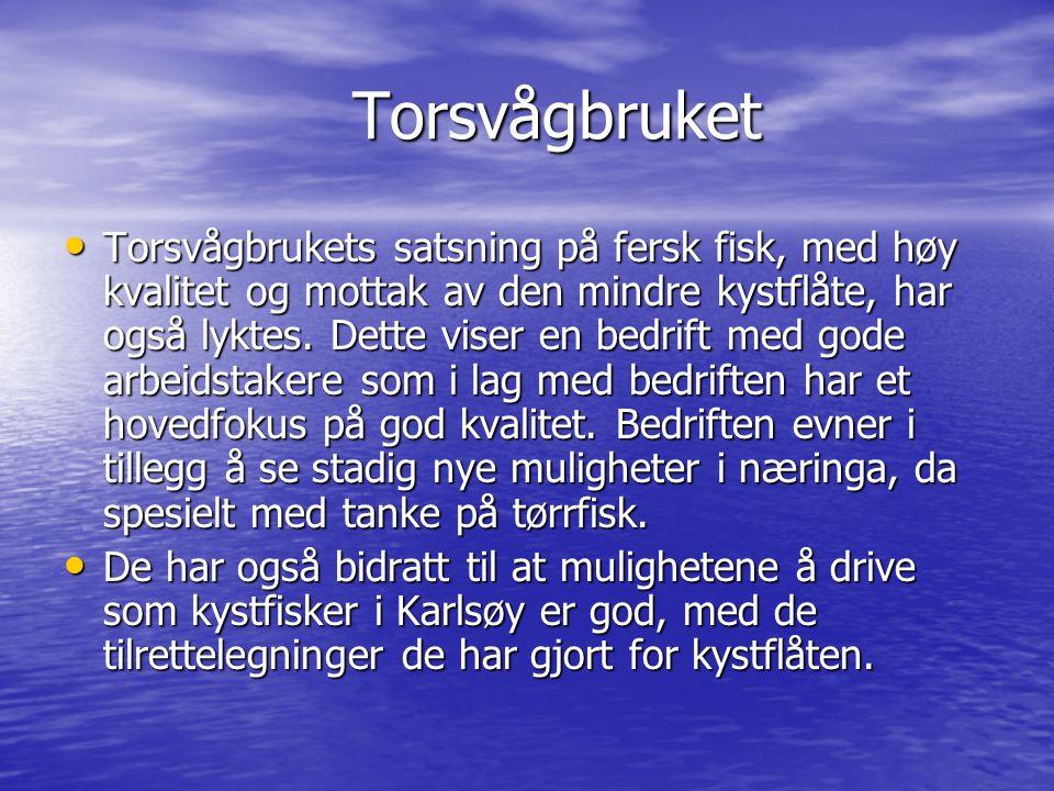 Torsvågbruket Torsvågbruket Torsvågbrukets satsning på fersk fisk, med høy kvalitet og mottak av den mindre kystflåte, har også lyktes. Dette viser en