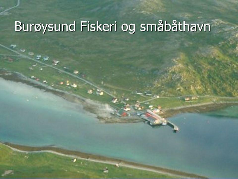 Burøysund Fiskeri og småbåthavn