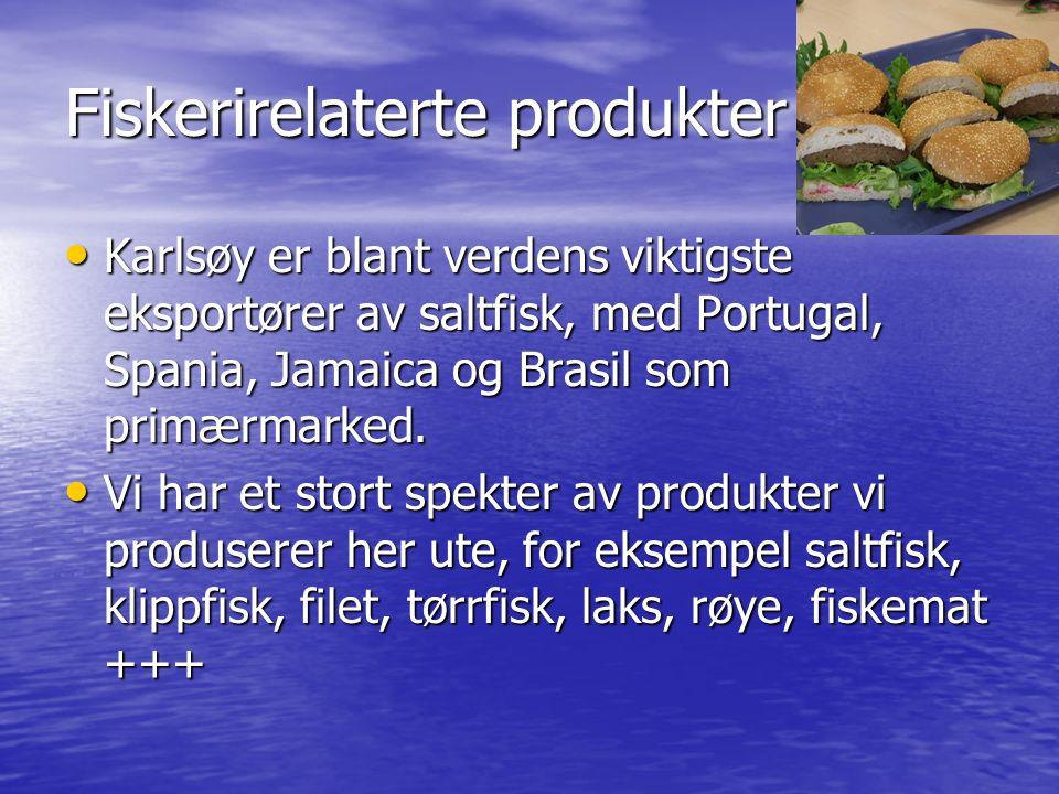 Fiskerirelaterte produkter Karlsøy er blant verdens viktigste eksportører av saltfisk, med Portugal, Spania, Jamaica og Brasil som primærmarked. Karls
