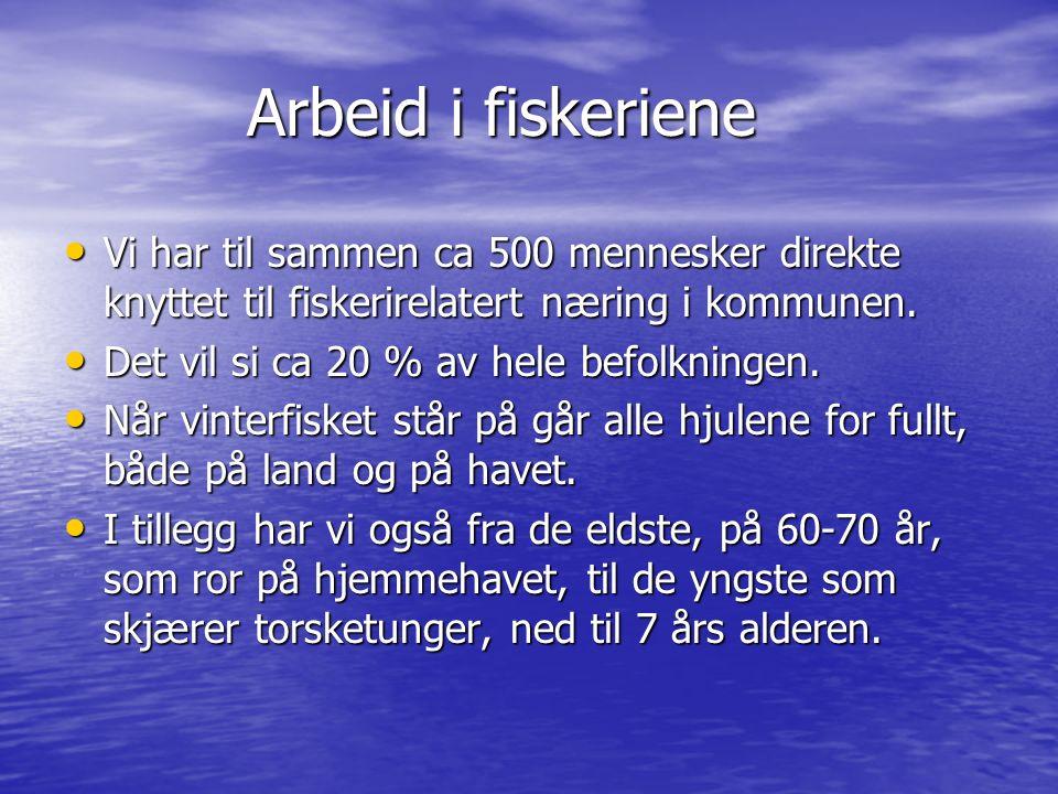 Arbeid i fiskeriene Arbeid i fiskeriene Vi har til sammen ca 500 mennesker direkte knyttet til fiskerirelatert næring i kommunen. Vi har til sammen ca