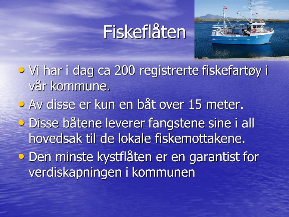 Fiskeflåten Vi har i dag ca 200 registrerte fiskefartøy i vår kommune. Vi har i dag ca 200 registrerte fiskefartøy i vår kommune. Av disse er kun en b