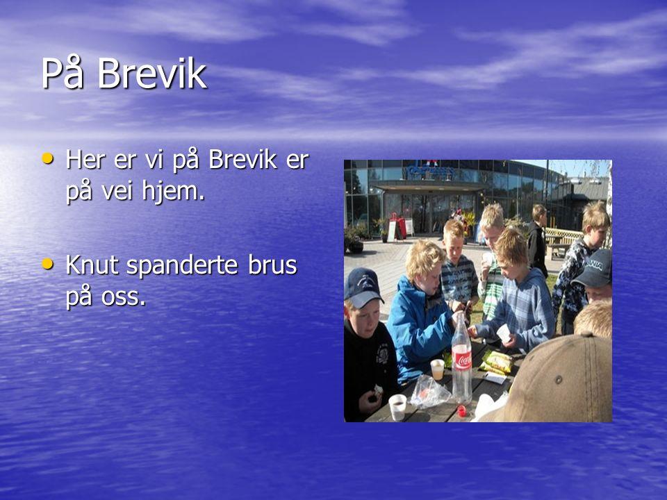 På Brevik Her er vi på Brevik er på vei hjem. Her er vi på Brevik er på vei hjem. Knut spanderte brus på oss. Knut spanderte brus på oss.
