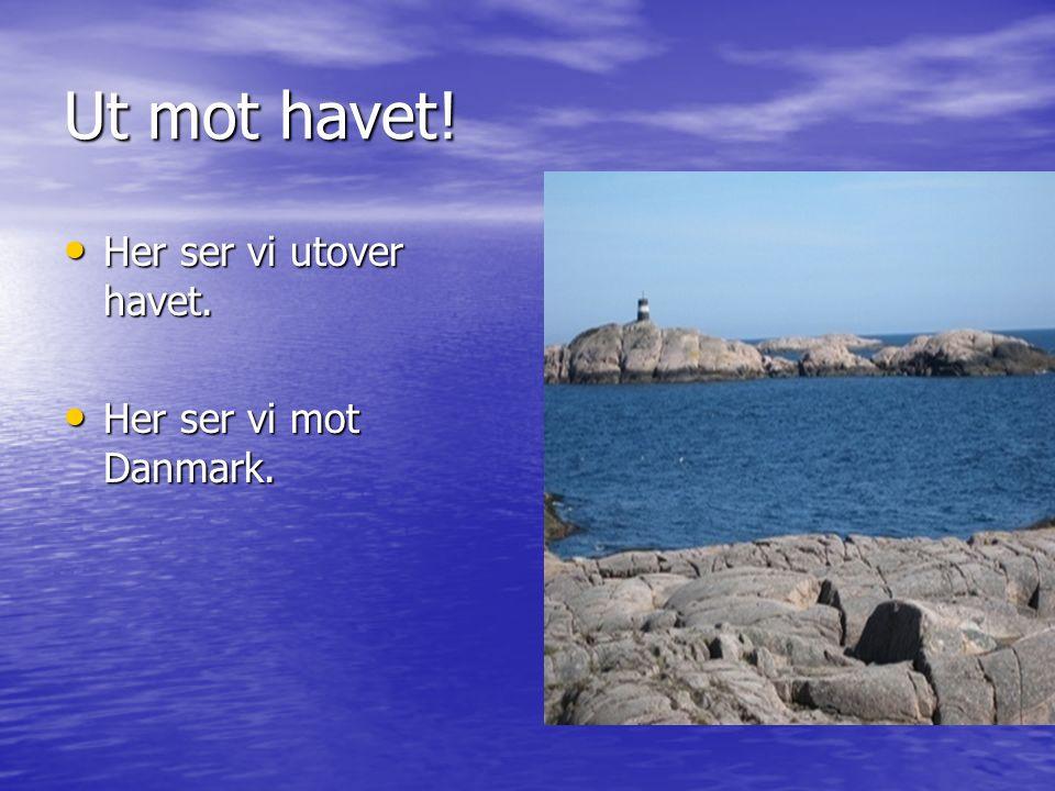 Ut mot havet! Her ser vi utover havet. Her ser vi utover havet. Her ser vi mot Danmark. Her ser vi mot Danmark.