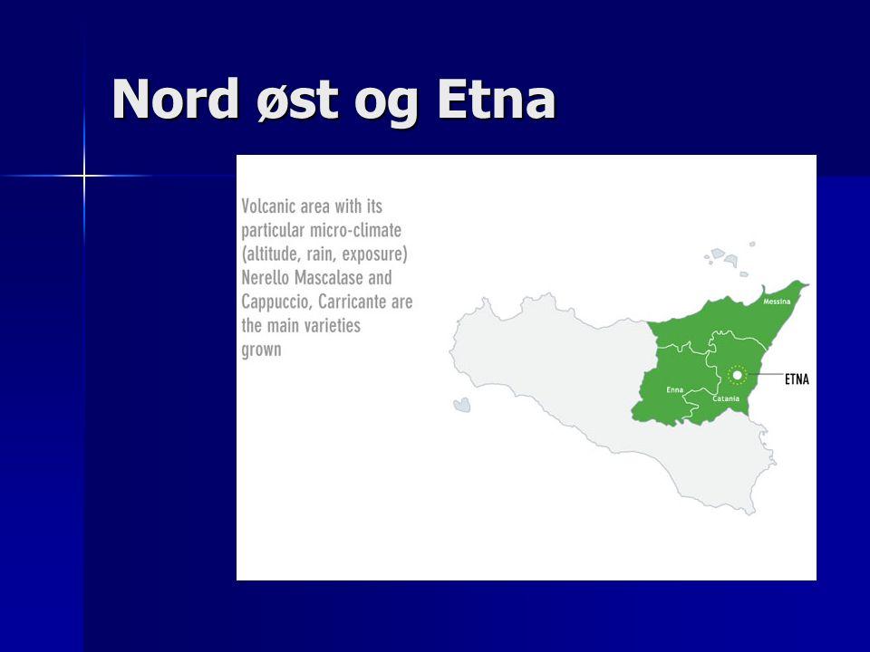 Nord øst og Etna