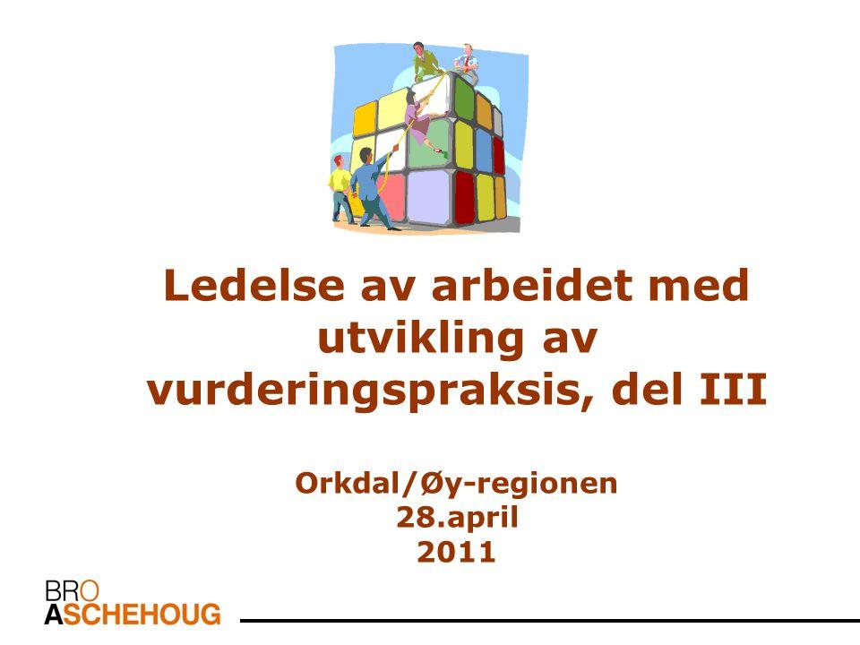 Ledelse av arbeidet med utvikling av vurderingspraksis, del III Orkdal/Øy-regionen 28.april 2011