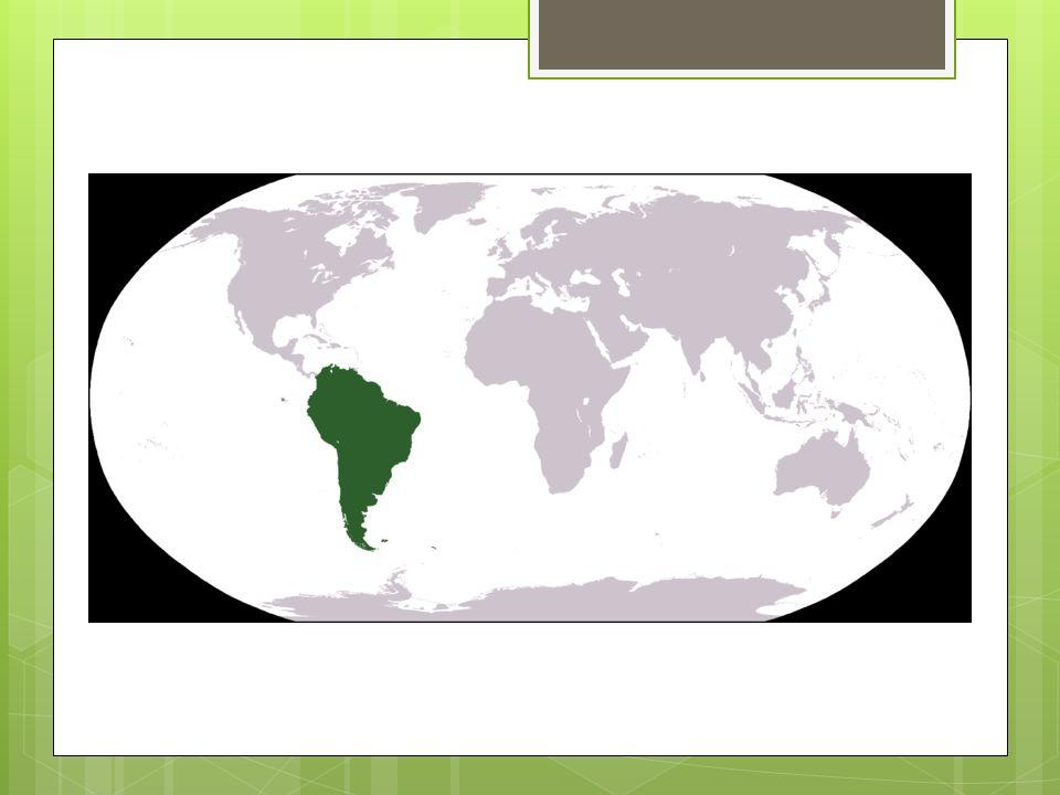  Sør Amerika er 7000 km langt fra Colombia til Chile.