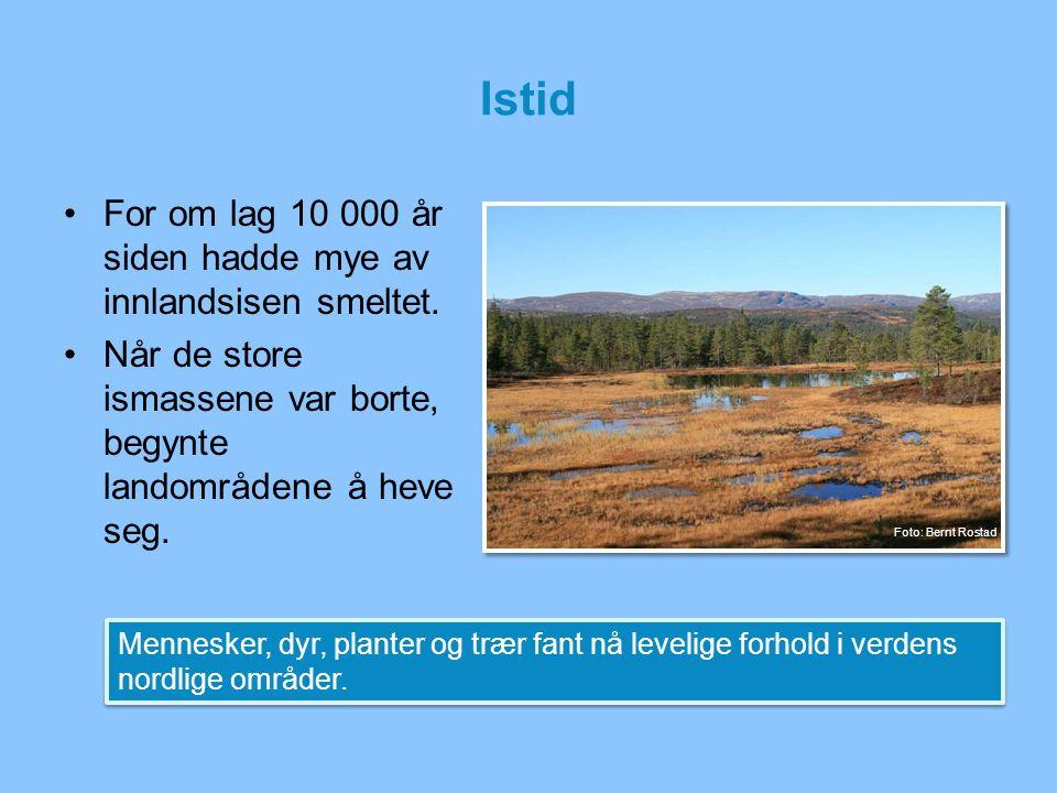 Istid For om lag 10 000 år siden hadde mye av innlandsisen smeltet. Når de store ismassene var borte, begynte landområdene å heve seg. Mennesker, dyr,