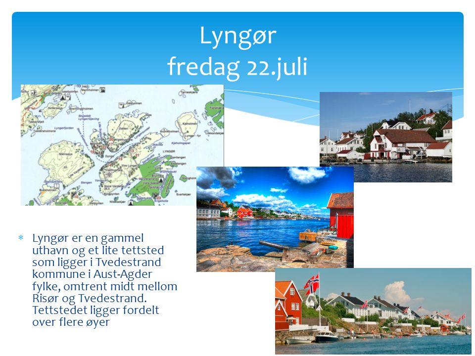  Lyngør er en gammel uthavn og et lite tettsted som ligger i Tvedestrand kommune i Aust-Agder fylke, omtrent midt mellom Risør og Tvedestrand.