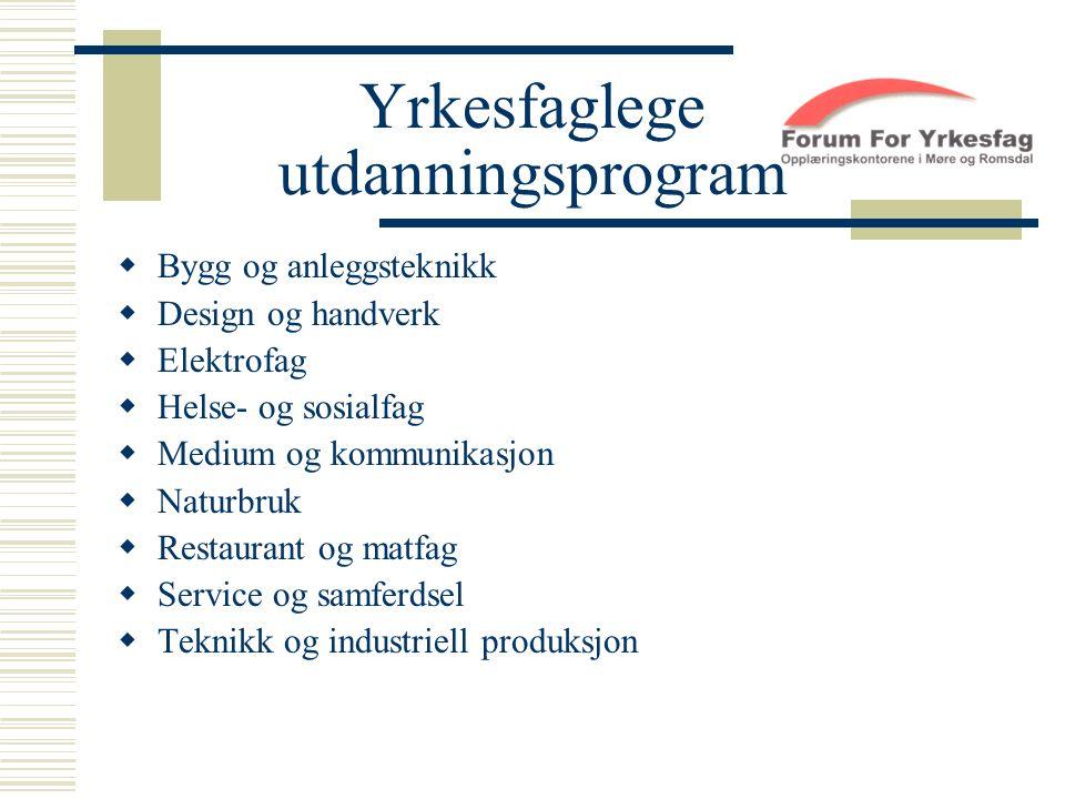 Yrkesfaglege utdanningsprogram  Bygg og anleggsteknikk  Design og handverk  Elektrofag  Helse- og sosialfag  Medium og kommunikasjon  Naturbruk