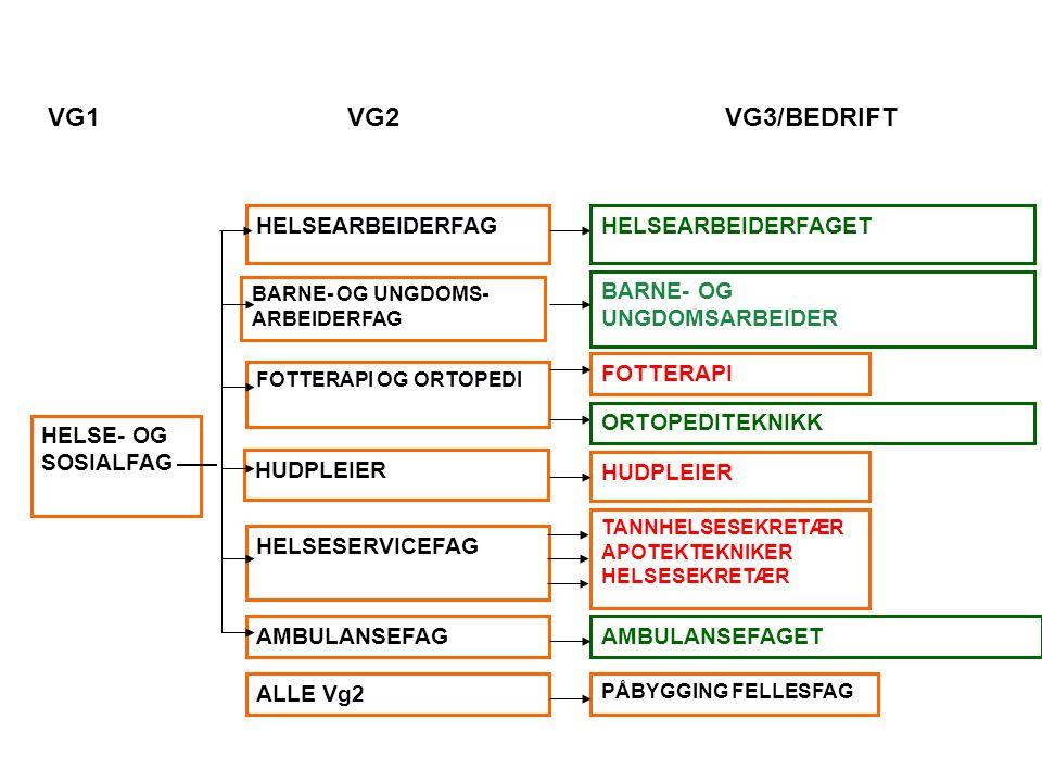 HELSE- OG SOSIALFAG HELSEARBEIDERFAG BARNE- OG UNGDOMS- ARBEIDERFAG FOTTERAPI OG ORTOPEDI HELSESERVICEFAG AMBULANSEFAG ALLE Vg2 HUDPLEIER HELSEARBEIDERFAGET BARNE- OG UNGDOMSARBEIDER HUDPLEIER FOTTERAPI TANNHELSESEKRETÆR APOTEKTEKNIKER HELSESEKRETÆR AMBULANSEFAGET PÅBYGGING FELLESFAG ORTOPEDITEKNIKK VG1 VG2 VG3/BEDRIFT