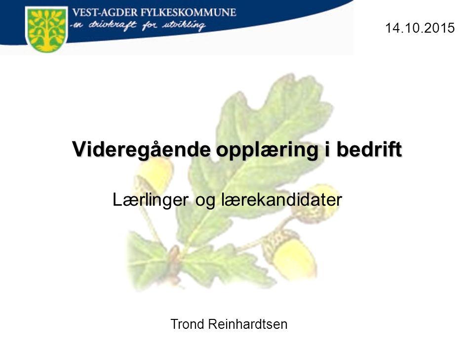 Videregående opplæring i bedrift 14.10.2015 Trond Reinhardtsen Lærlinger og lærekandidater