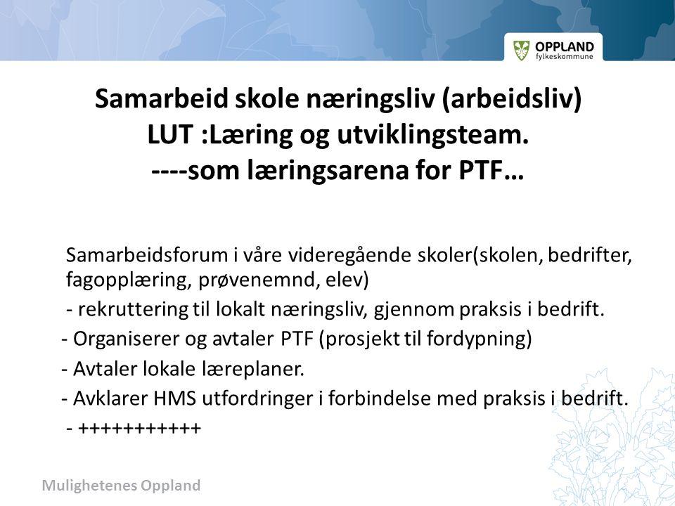 Mulighetenes Oppland Muligheter innenfor det 4-årige opplæringsløpet Eksempel på fremtidens behov for kompetanse: Nærings- og arbeidsliv i Oppland har rekrutteringsutfordringer.