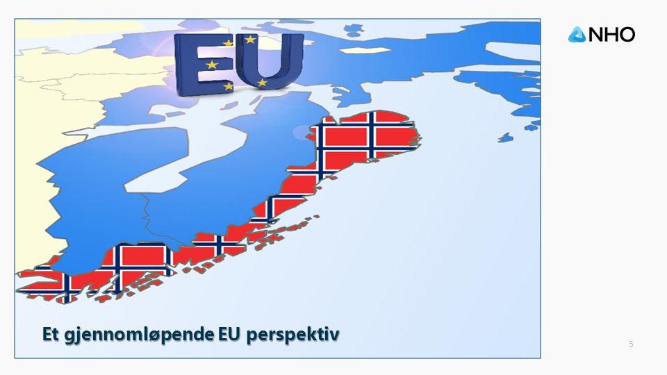 5 Et gjennomløpende EU perspektiv