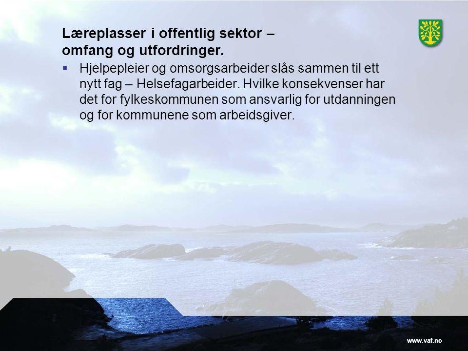 www.vaf.no Læreplasser i offentlig sektor – omfang og utfordringer.