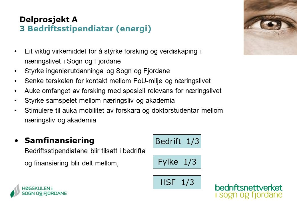 Delprosjekt A 3 Bedriftsstipendiatar (energi) Eit viktig virkemiddel for å styrke forsking og verdiskaping i næringslivet i Sogn og Fjordane Styrke in