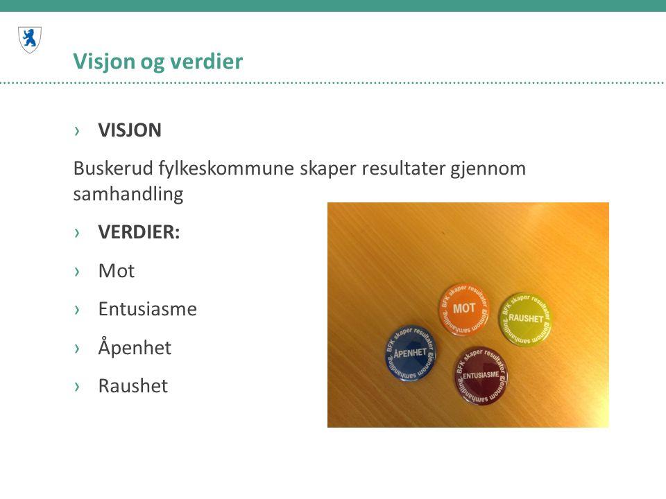 Visjon og verdier ›VISJON Buskerud fylkeskommune skaper resultater gjennom samhandling ›VERDIER: ›Mot ›Entusiasme ›Åpenhet ›Raushet