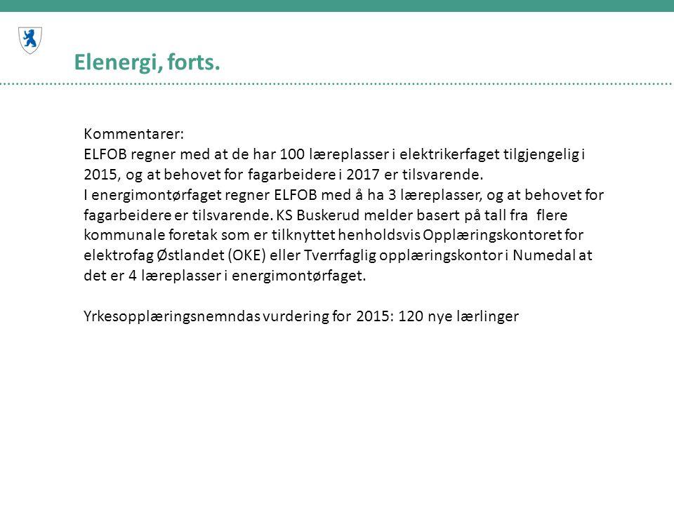 Elenergi, forts. Kommentarer: ELFOB regner med at de har 100 læreplasser i elektrikerfaget tilgjengelig i 2015, og at behovet for fagarbeidere i 2017