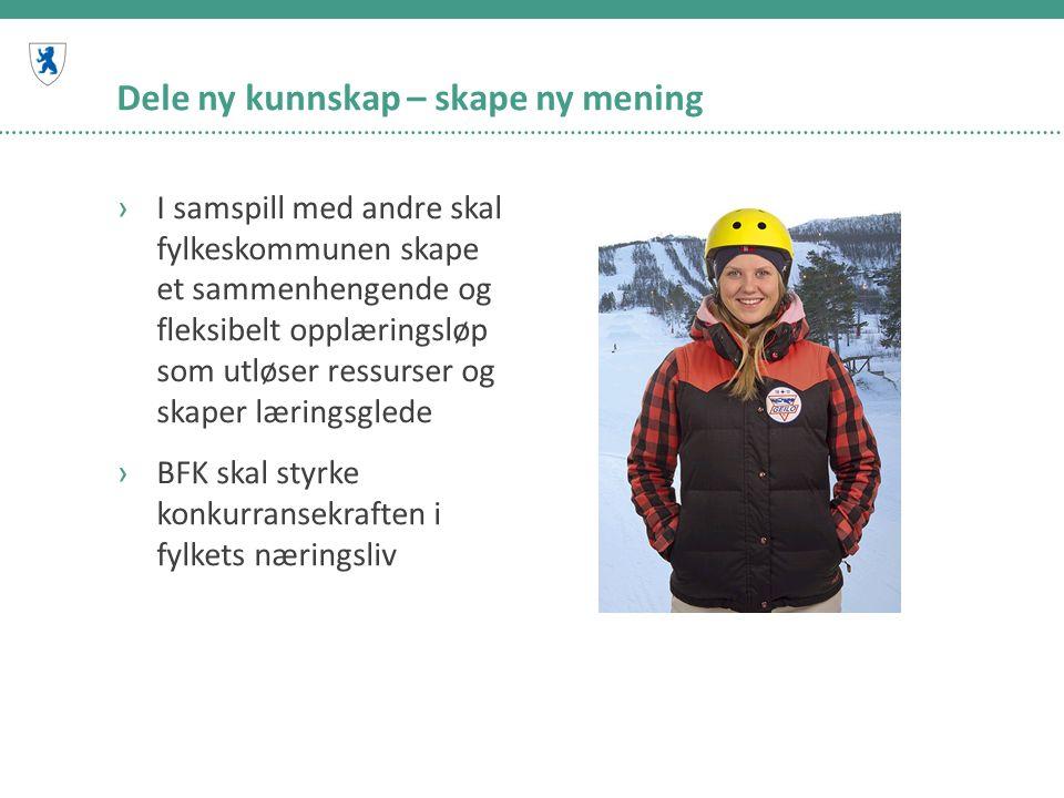 Eksempler ›Hentet fra Fagopplæring i Buskerud framover: behovet for fagarbeidere i 2017 og antall lærlinger fra 2015