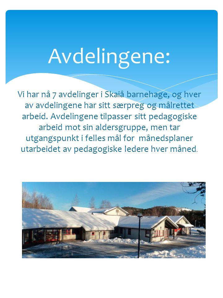 Avdelingene: Vi har nå 7 avdelinger i Skaiå barnehage, og hver av avdelingene har sitt særpreg og målrettet arbeid.