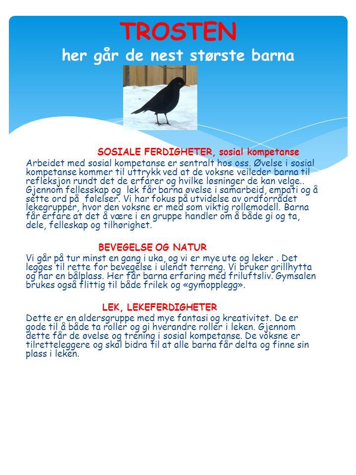 SOSIALE FERDIGHETER, sosial kompetanse Arbeidet med sosial kompetanse er sentralt hos oss.