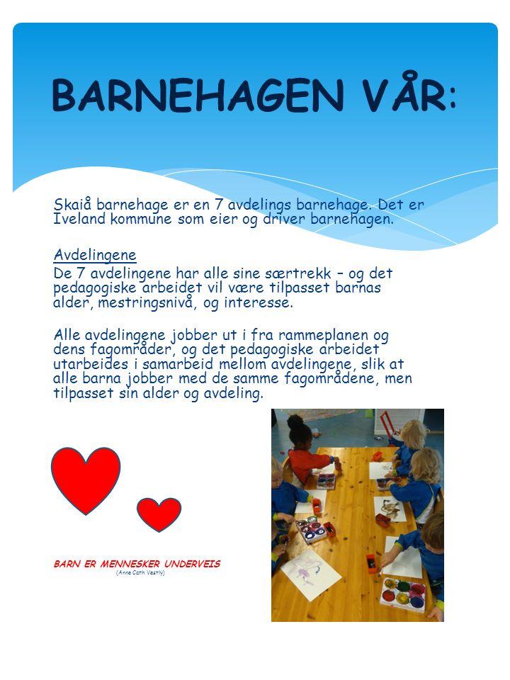 Skaiå barnehage er en 7 avdelings barnehage. Det er Iveland kommune som eier og driver barnehagen.