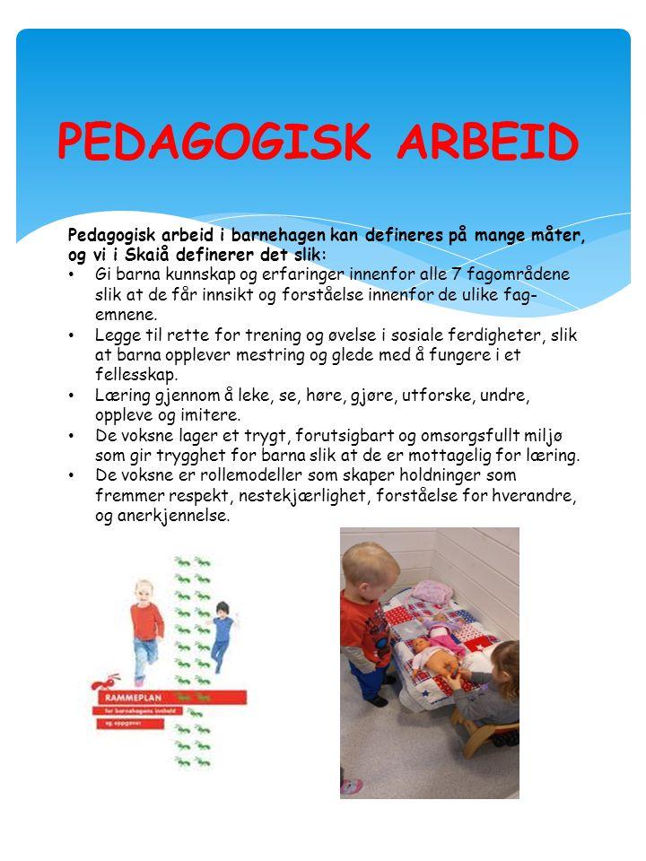 PEDAGOGISK ARBEID Pedagogisk arbeid i barnehagen kan defineres på mange måter, og vi i Skaiå definerer det slik: Gi barna kunnskap og erfaringer innenfor alle 7 fagområdene slik at de får innsikt og forståelse innenfor de ulike fag- emnene.