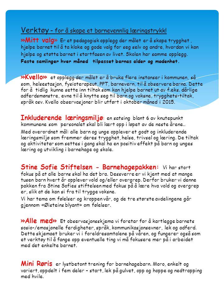 Verktøy – for å skape et barnevennlig læringstrykk.