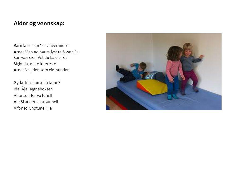 Den ville leken Å forstå og gjøre seg forstått er en viktig kapital; mulighet for posisjonering Barn kommuniserer og leker gjennom bruk av kropp Vi sier bråk, mens de sier lek; betydning av det kroppslige samspillet – Kapital, mestring, humor og glede – I den ville leken gror vennskap, gjennom vennskap lærer barn språk av hverandre Utfordring: Forstå verdi av den ville leken i språklæringssammenheng dagsrytme ute/innelek rom voksnes deltakelse regelbruk Respekt for barns kroppslige væremåter