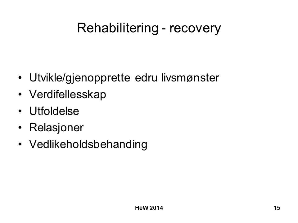 Rehabilitering - recovery Utvikle/gjenopprette edru livsmønster Verdifellesskap Utfoldelse Relasjoner Vedlikeholdsbehanding HeW 201415