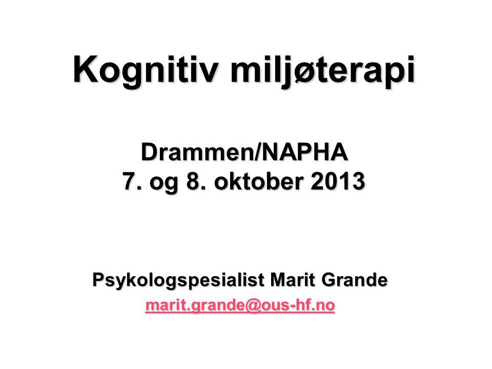 Kognitiv miljøterapi Drammen/NAPHA 7. og 8.