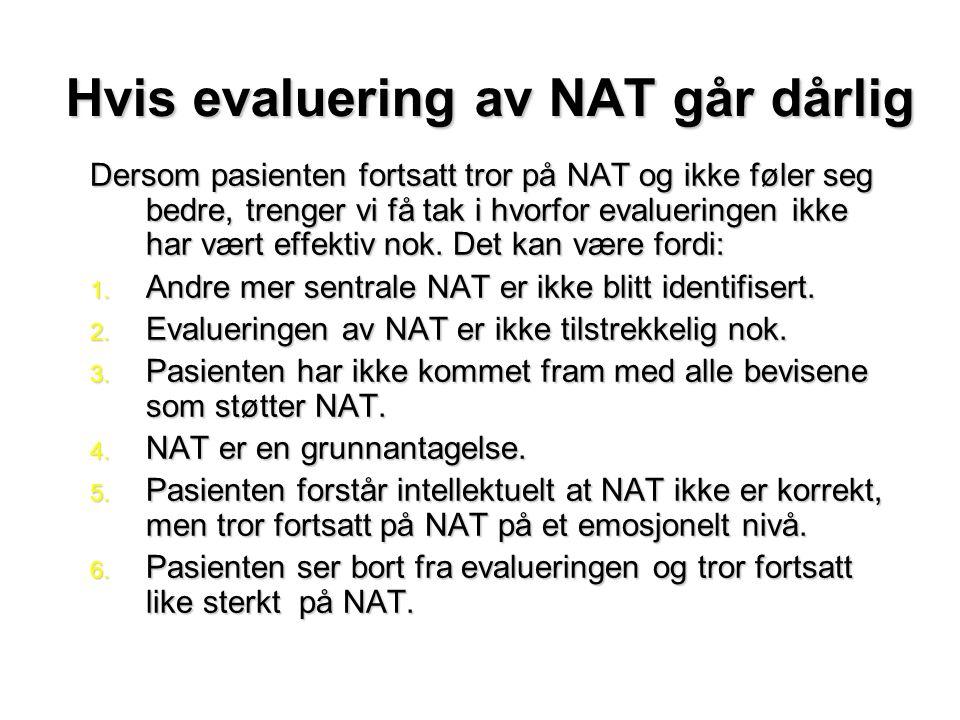 Hvis evaluering av NAT går dårlig Dersom pasienten fortsatt tror på NAT og ikke føler seg bedre, trenger vi få tak i hvorfor evalueringen ikke har vært effektiv nok.