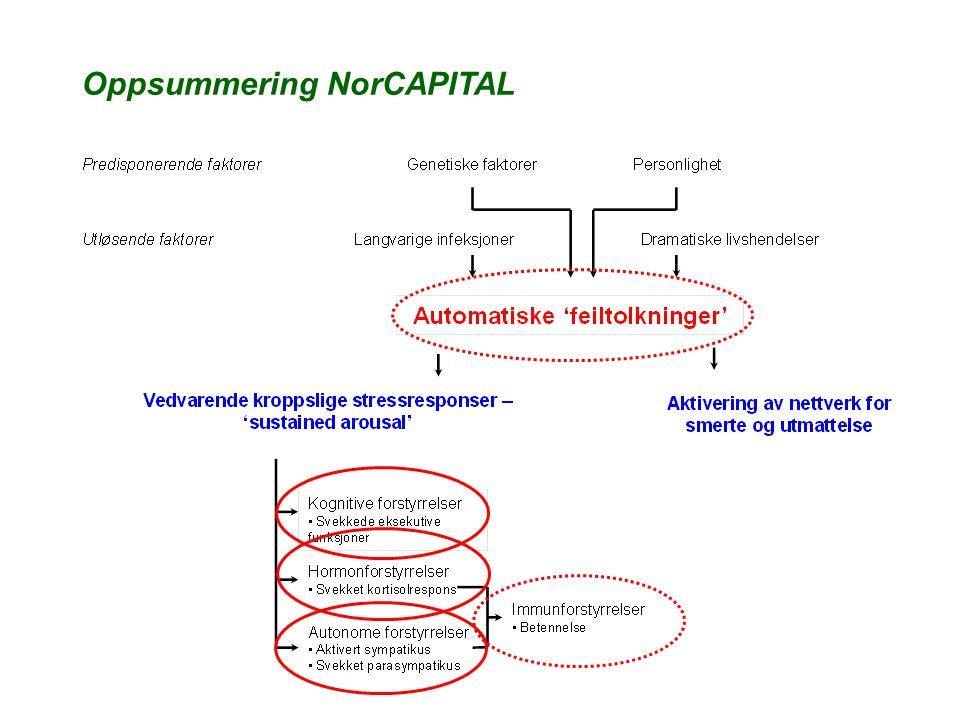 Oppsummering NorCAPITAL